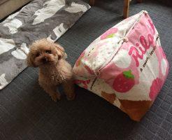 犬の手作りベッド