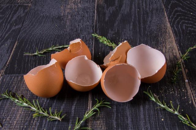 卵の殻を再利用