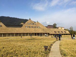 草屋根の冬