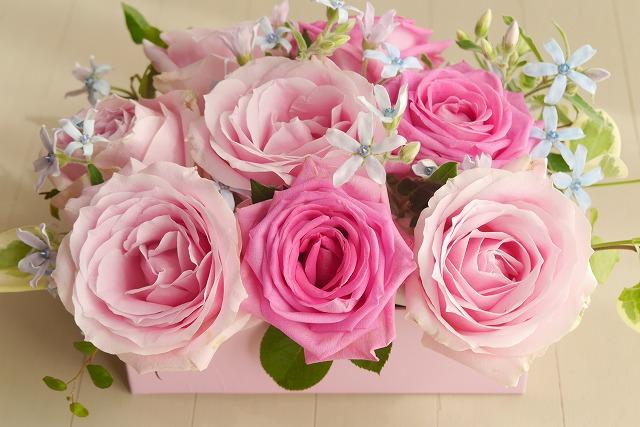 母の日の花の選び方!ふさわしい種類とプレゼントの予算は?