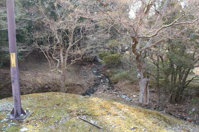 大仏蛍が見える大湯屋周辺の小川