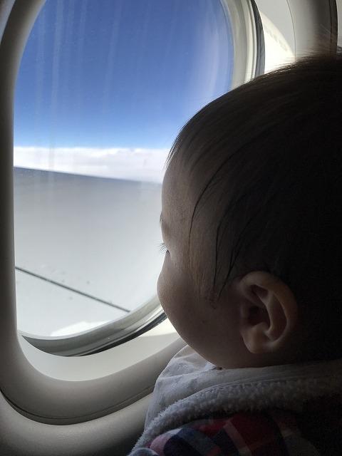 赤ちゃんを飛行機にいつから乗せる?