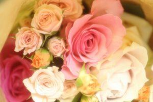 敬老の日にバラ