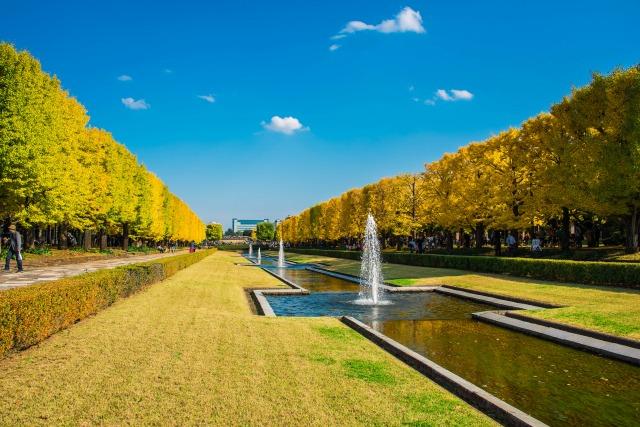 昭和記念公園立川口カナール