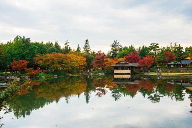 昭和記念公園の日本庭園の紅葉
