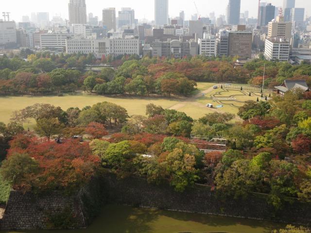 大阪城西の丸庭園の桜の紅葉