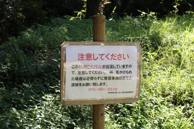 ほしだ園地イノシシ注意
