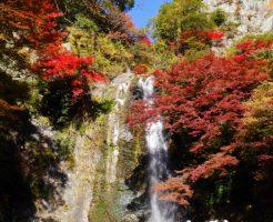 箕面大滝の紅葉